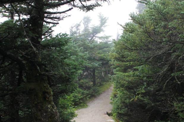 hiking1
