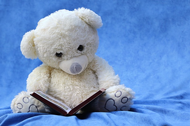still-life-teddy-white-read